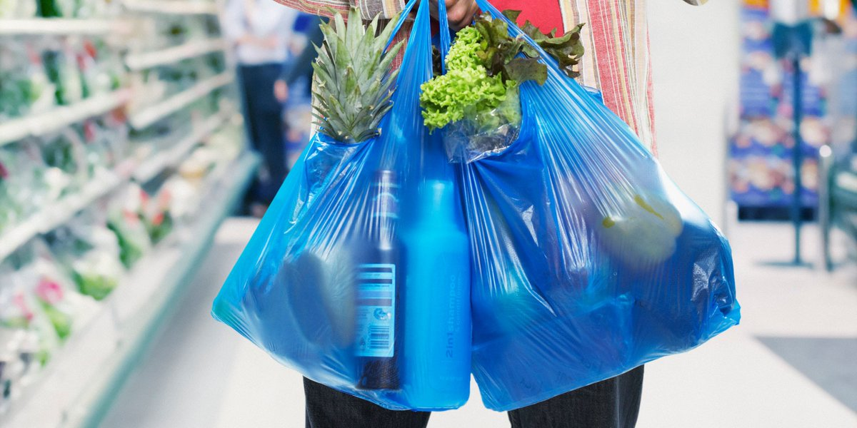 An image of plastic shopping bags full of groceries