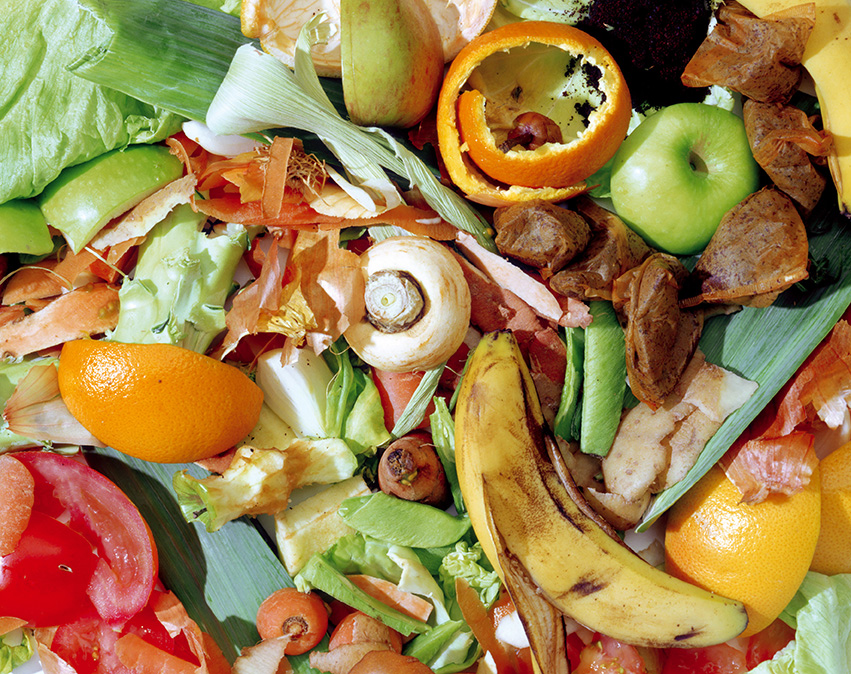 An image of food waste
