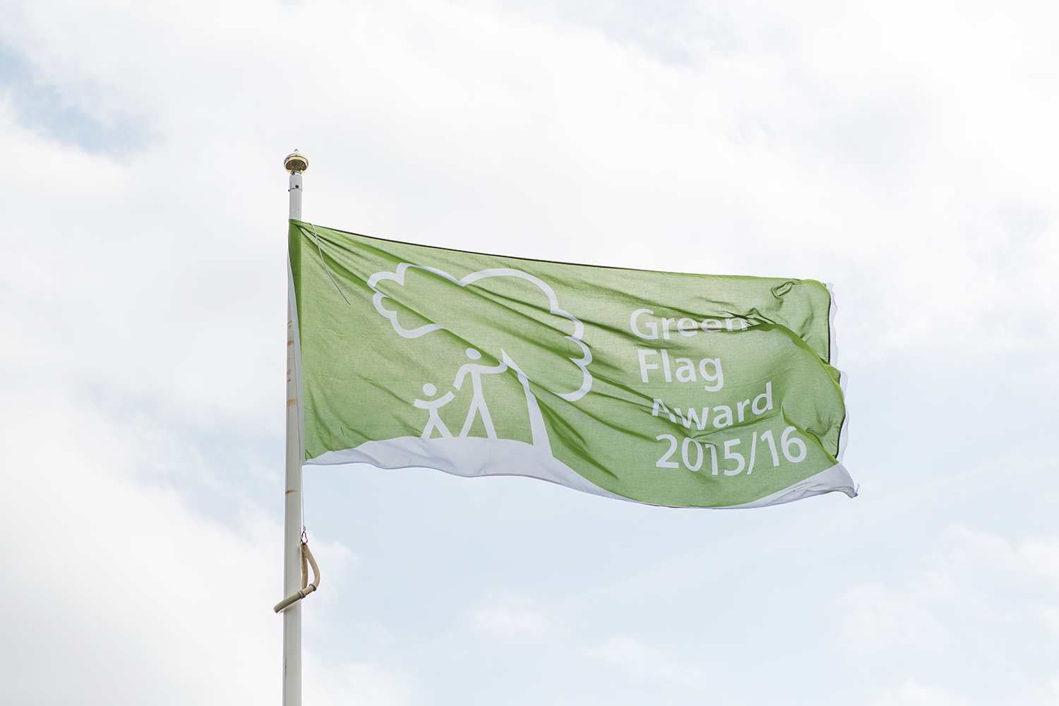 An image of a Green Flag