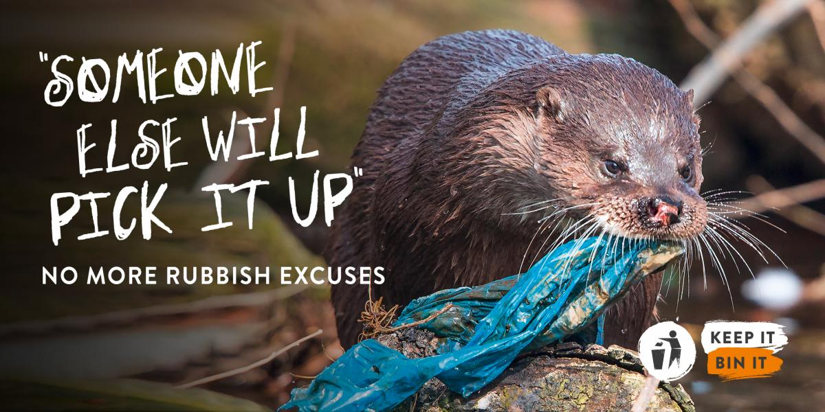 Devastating impact on nature highlighted in new campaign to fight ...