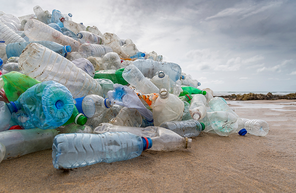An image of plastic bottles littered on a beach